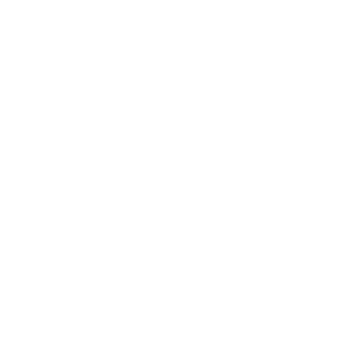THE PROSPECT